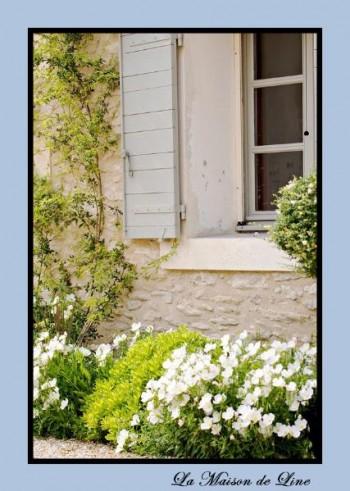 una-favolosa-maison-de-charme-a-saint-remy-in-L-ItdcBb