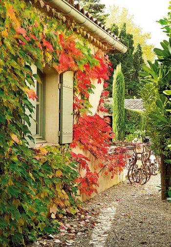 adelaparvu.com-despre-casa-in-stil-Provence-Maison-de-Line-Franta-16